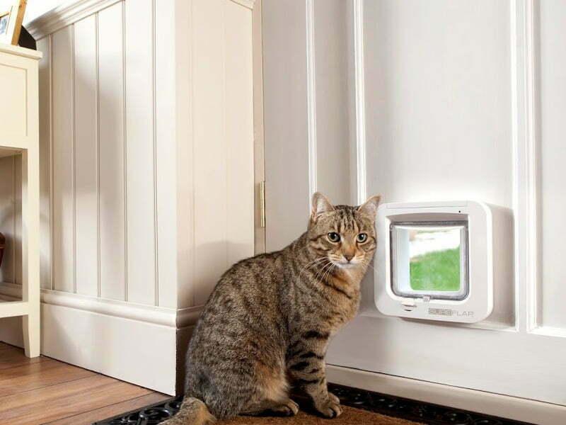 cat flap installation glass door