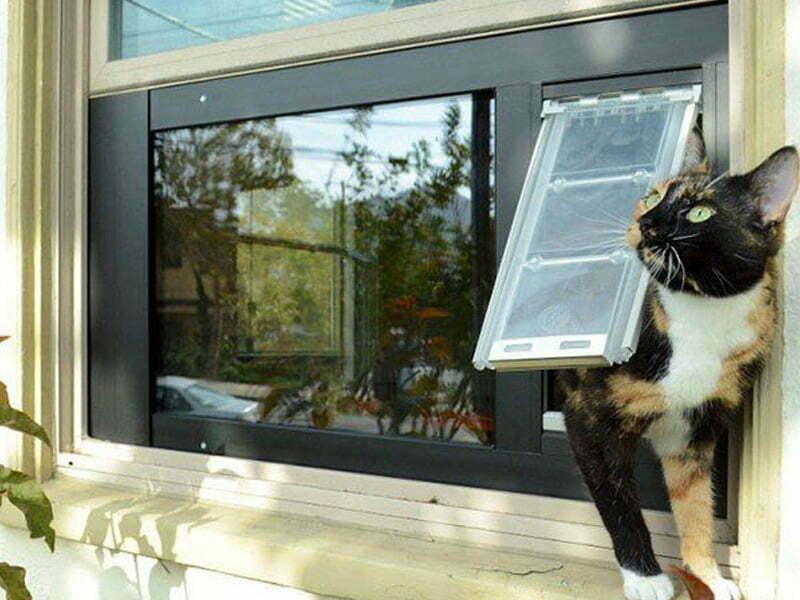 best cat flap for double glazed door