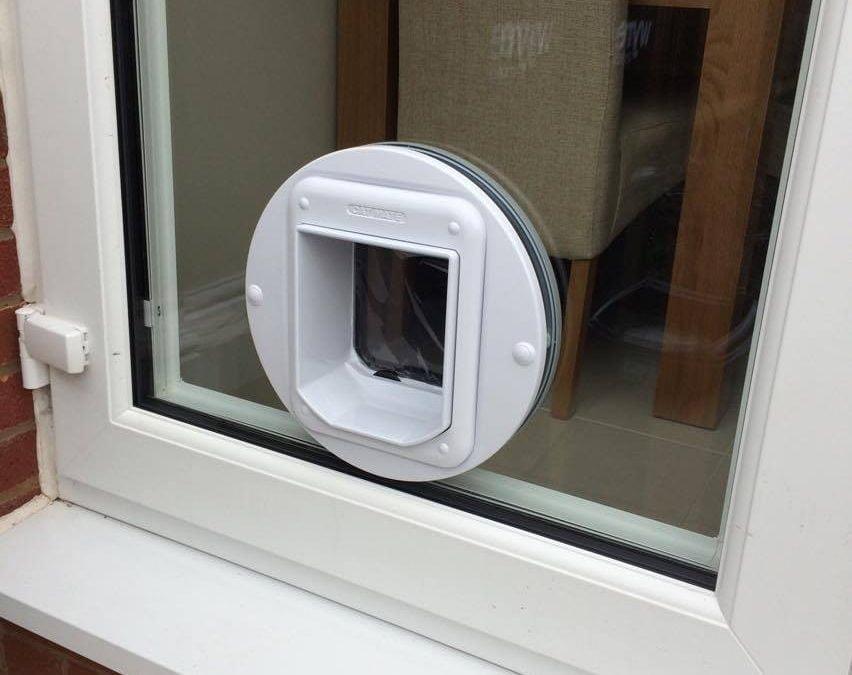cat flap window insert