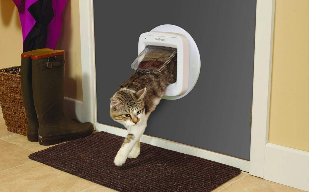 cat flap installation