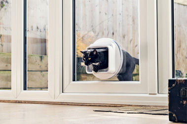 Microchip Cat Flap Services